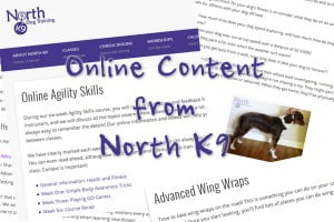 Online Content with North K9